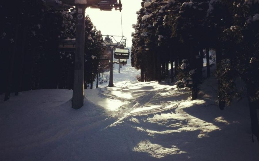 2/25現在 近隣の滑走可能なスキー場
