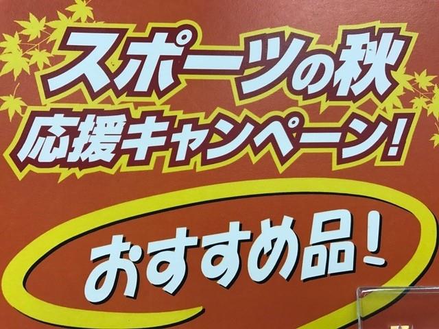 NEWモデル続々入荷!!