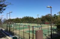 秋季太陽スポーツ杯テニス大会