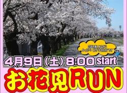 砺波店 「お花見RUN」 参加ランナー募集中!