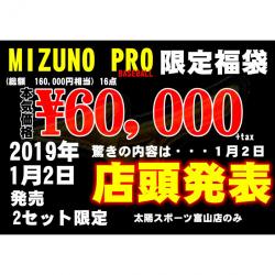 本気です。ミズノプロ野球福袋6万円!限定二個